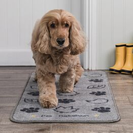 Pet Rebellion Stop Muddy Paws Country Walk Barrier Rug - 45 x 100cm