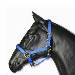 Hy Deluxe Padded Head Collar For Cob