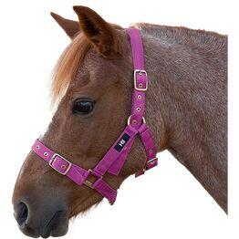 Hy Holly Fully Adjustable Head Collar - Fuchsia - Pony