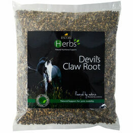 Lincoln Herbs Devil's Claw Root - 1kg
