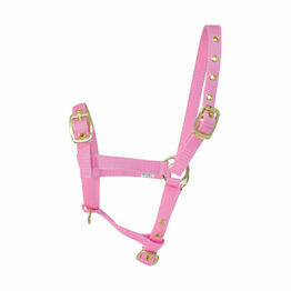 Hy Foal Head Collar - Pink - One Size