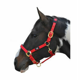 Hy Deluxe Padded Head Collar - Red - Full