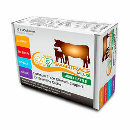 Agrimin 24-7 Smart Trace Plus for Cattle - 10 x 195g