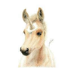 Deckled Edge Eureka! A3 Print - Uni-Foal