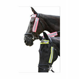 HyVIZ Bridle Set - 3 pieces