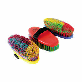 Haas Ladies Brush - Assorted Colours (200 x 85mm)