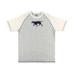 LazyOne Labradors Mens PJ T-Shirt