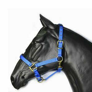 Hy Deluxe Padded Head Collar For Pony