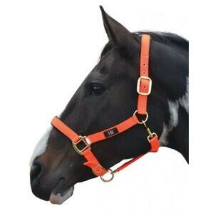 Hy Grand Prix Head Collar - Hot Orange