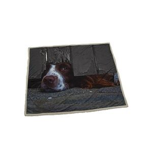 Country Matters Soft touch Throw I Spy Spaniel