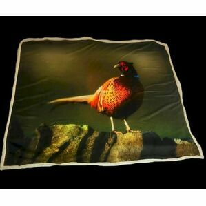 Pheasant On Wall Throw Country Matters