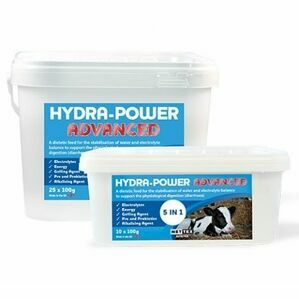 Nettex Hydra-Power Single Sachet scour sachet