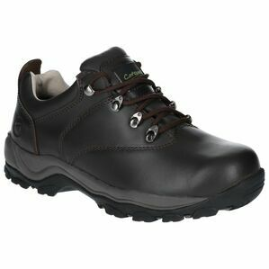 Cotswold Winstone Low Waterproof Hiking in Brown