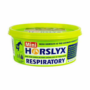 Horslyx Respiratory - Mini - 650g