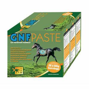 GNF Paste - 28 x 80g