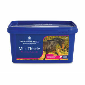 D&H Milk Thistle