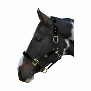 Hy Deluxe Padded Head Collar - Black