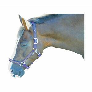 Hy Diamante Head Collar - Brilliant Blue/Diamante