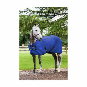 LeMieux Thermo-Cool Rug - Benetton Blue
