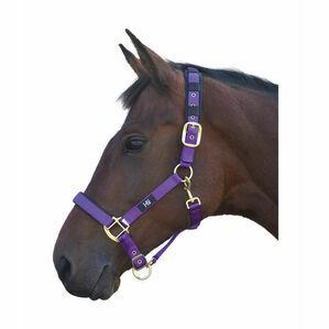 Hy Deluxe Padded Head Collar - Purple