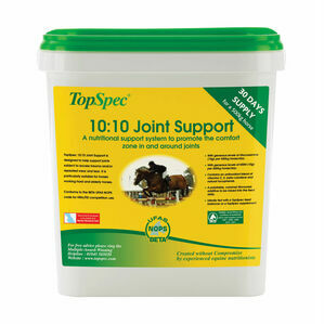 TopSpec 10:10 Joint Support For Horses