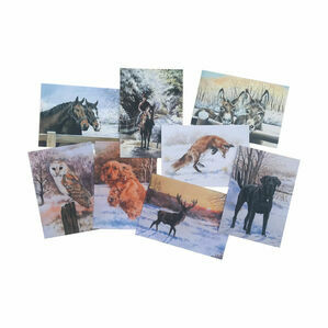 Caroline Cook Winter Collection - Pack of 16