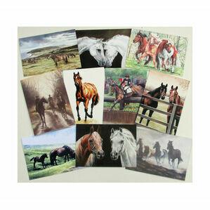 Caroline Cook Equestrian Cards