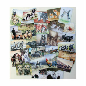 Caroline Cook Equestrian and Countryside Cards - Multi Pack of 60