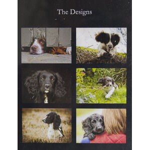 Country Matters Placemats - Spaniels
