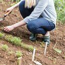 Muck Boots RHS Muckster II Gardening Clog in Moss additional 2