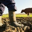 Muck Boots Chore Classic Tall Wellington Boots in Moss additional 9