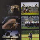 Country Matters Equine Placemats additional 1