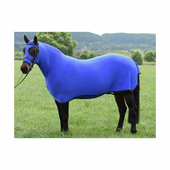 Belvoir Rug Company Honsie Life - Royal Blue with Black Trim