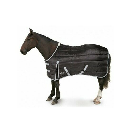 Maverick Heavy 300d Standard Stable Horse Rug - Black/Grey