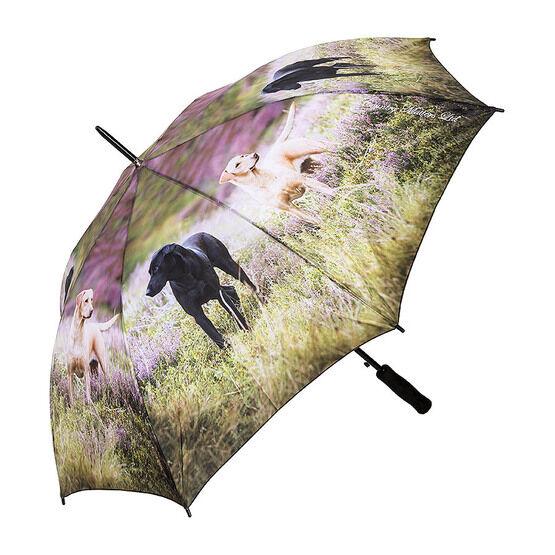 Country Matters Alert Labs - Umbrella