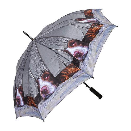 Country Matters I Spy Spaniel - Umbrella
