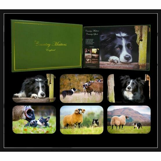 Collie Placemats Country Matters Set of 6
