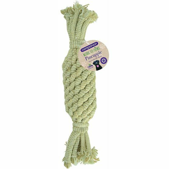 Companion Natural Eco-Friends Pineapple Shaped Dog Toy